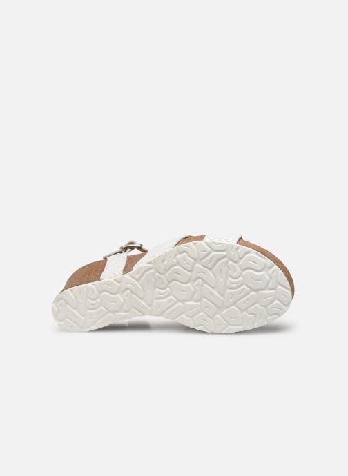 Sandales et nu-pieds Panama Jack Vika Blanc vue haut