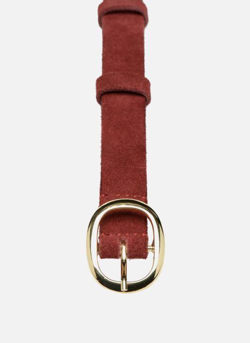 Cinturones Petite mendigote Little Jacques Belt Vino vista del modelo