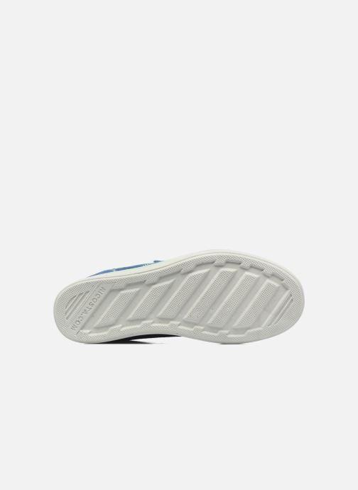 Sneakers Ricosta Mola Azzurro immagine dall'alto