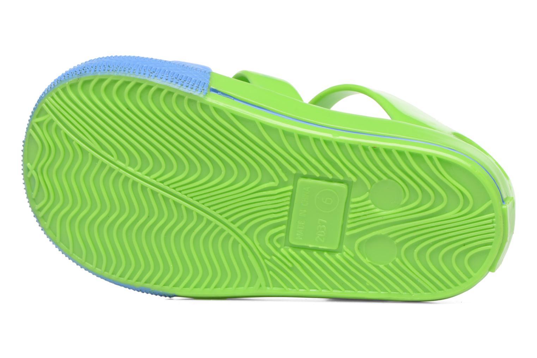 Sandalias Colors of California Jenny sandals LION Verde vista de arriba