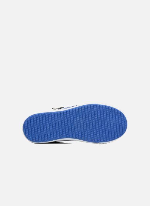 Baskets Bopy Nardoc Bleu vue haut