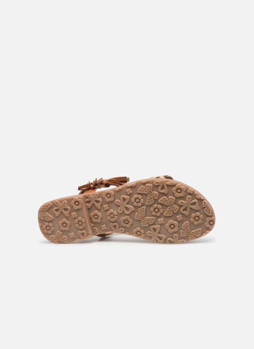 Sandales et nu-pieds L'Atelier Tropézien Aurélia Marron vue haut