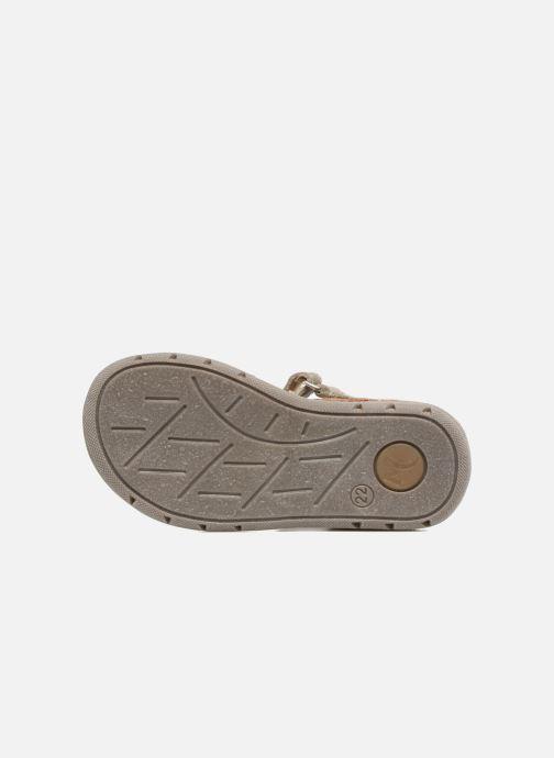 Sandaler Minibel Matchy Brun se foroven