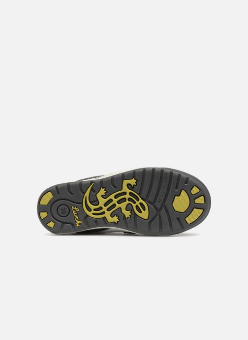 Sneakers Lurchi by Salamander Bruce Grigio immagine dall'alto