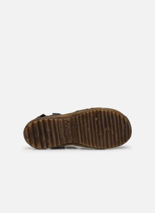 Sandali e scarpe aperte Naturino See Azzurro immagine dall'alto