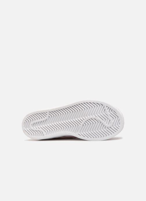 Sneakers adidas originals Superstar C Roze boven