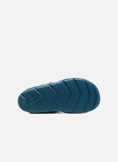 Sandalen Adidas Performance Altaswim C blau ansicht von oben