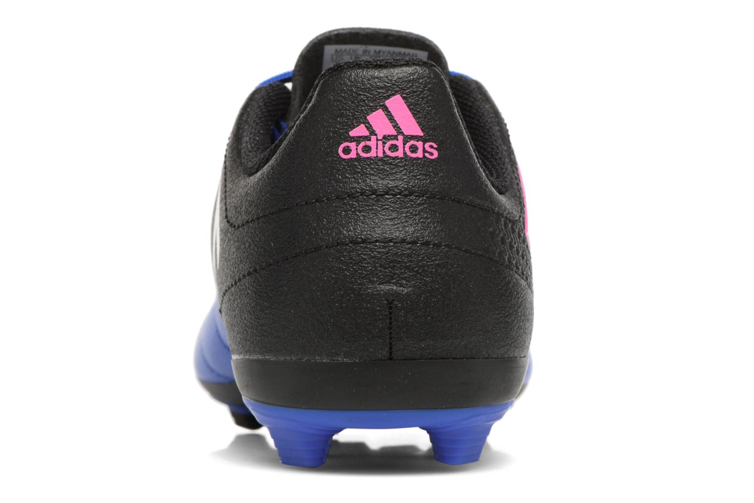 Sport shoes Adidas Performance Ace 17.4 Fxg J Black view from the right