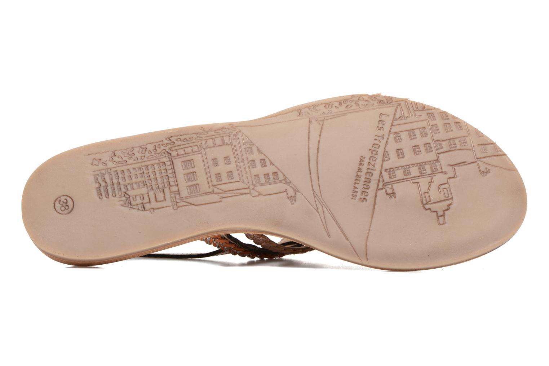 Sandales et nu-pieds Les Tropéziennes par M Belarbi Baraka Or et bronze vue haut