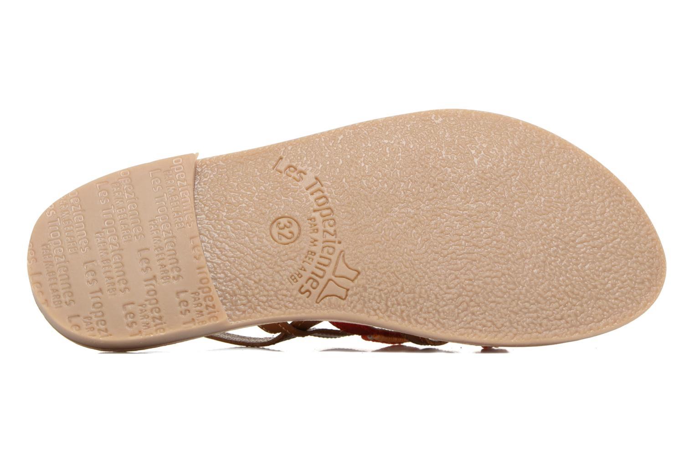 Sandales et nu-pieds Les Tropéziennes par M Belarbi Mango Marron vue haut