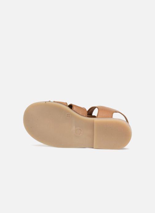 Sandales et nu-pieds Little Mary Brehat Marron vue haut