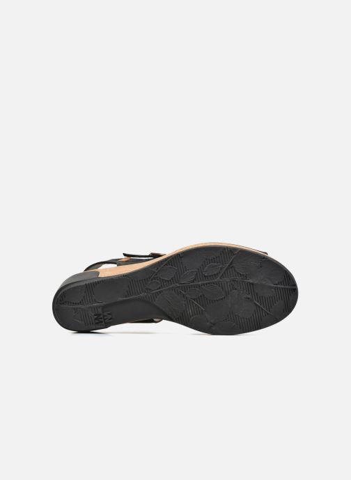 Sandales et nu-pieds El Naturalista Leaves N5000 Noir vue haut