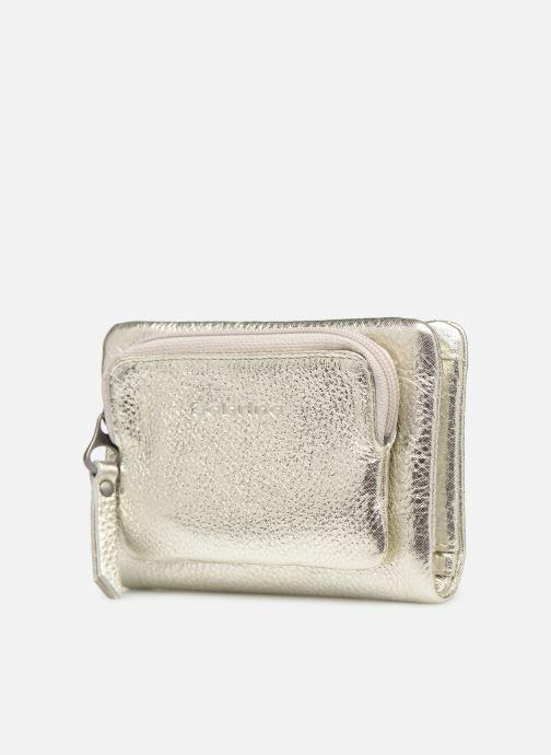 Wallets & cases Sabrina Ninon Silver model view