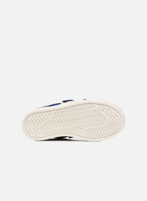 Baskets Acebo's Ricardo Bleu vue haut