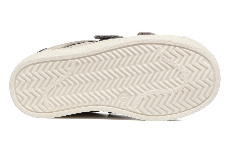 Sneakers Acebo's Ricardo Grigio immagine dall'alto