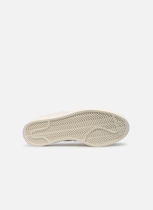 Sneakers adidas originals Campus Wit boven