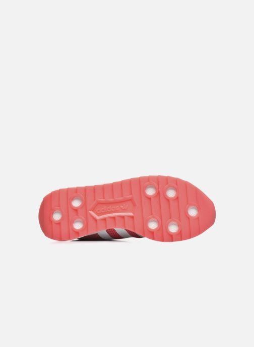 Sneaker adidas originals Flb W rot ansicht von links