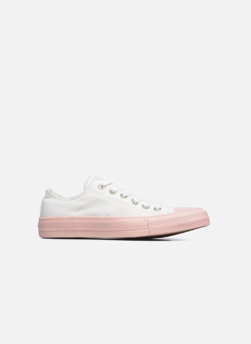 Sneaker Converse Chuck Taylor All Star II Ox Pastel Midsoles W weiß ansicht von hinten
