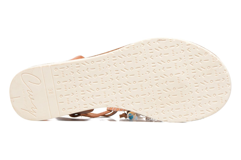 Sandali e scarpe aperte Coolway Honololu Marrone immagine dall'alto