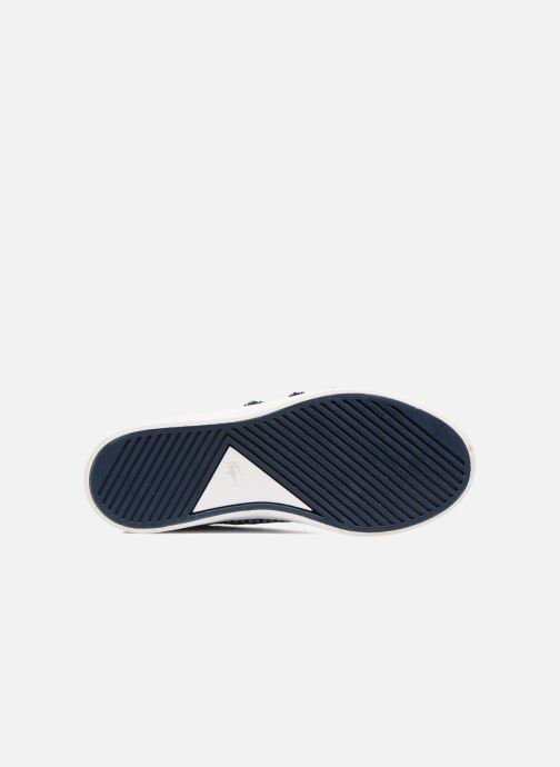 Sneakers Lacoste Riberac Blå se foroven