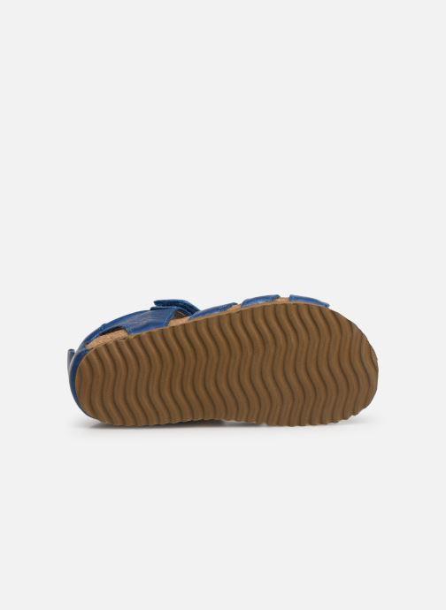 Sandales et nu-pieds Shoesme Stuart Bleu vue haut