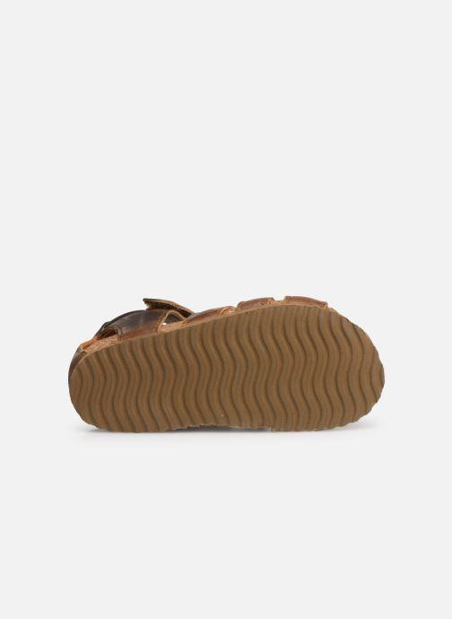 Sandales et nu-pieds Shoesme Stuart Marron vue haut