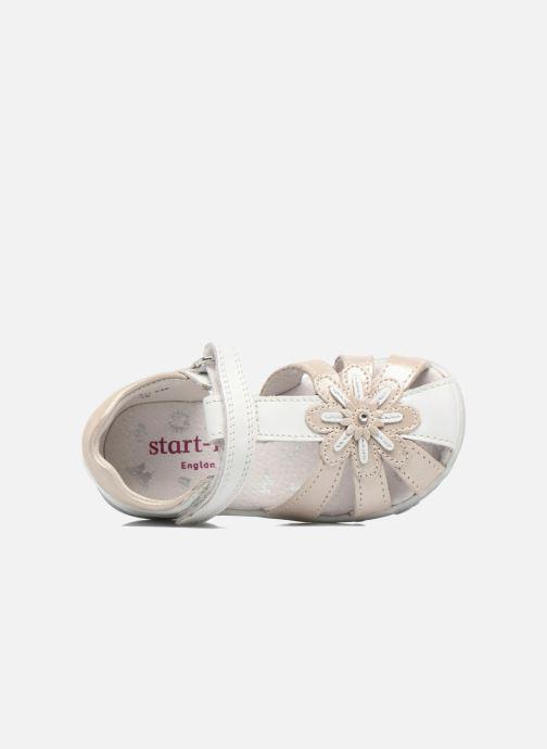 Sandali e scarpe aperte Start Rite Primrose Bianco immagine sinistra