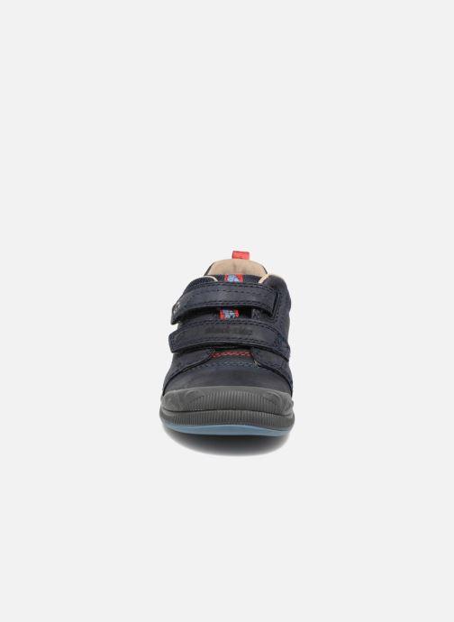Zapatos con velcro Start Rite Beetlebug Azul vista del modelo