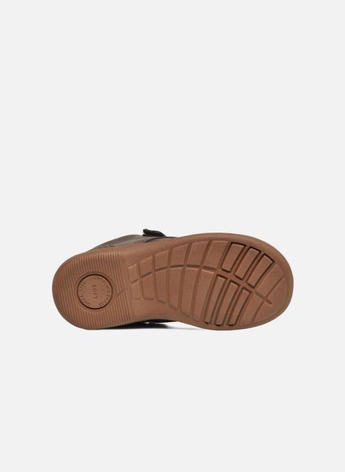 Chaussures à scratch Start Rite SR Super Soft Hugo Marron vue haut