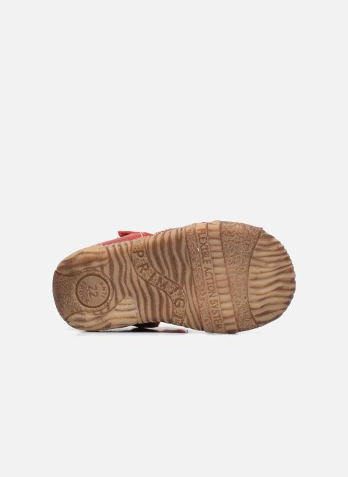 Sandales et nu-pieds Primigi Gabrio Rouge vue haut