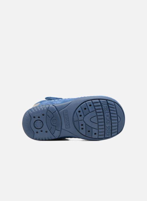 Zapatos con velcro Primigi Luca Azul vista de arriba
