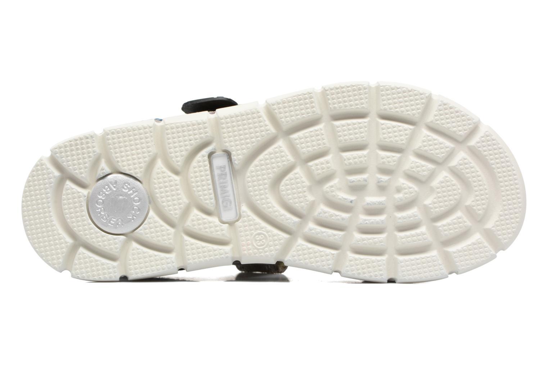 Sneakers Primigi Polo Grigio immagine dall'alto
