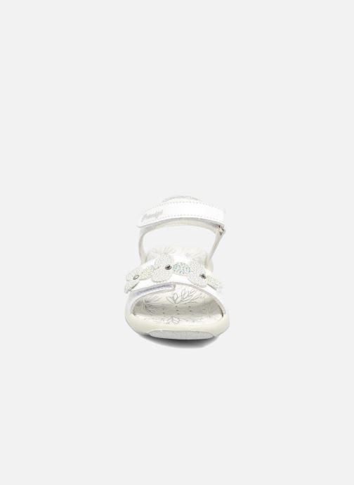 Sandales et nu-pieds Primigi Anita Blanc vue portées chaussures