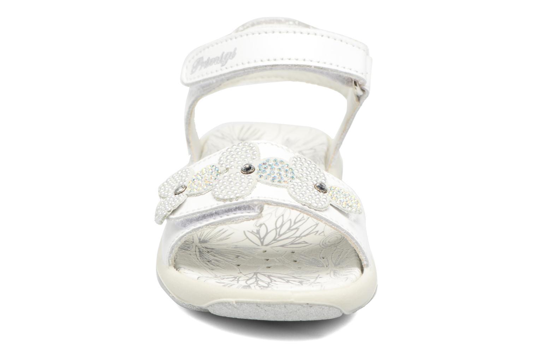 Sandali e scarpe aperte Primigi Anita Bianco modello indossato