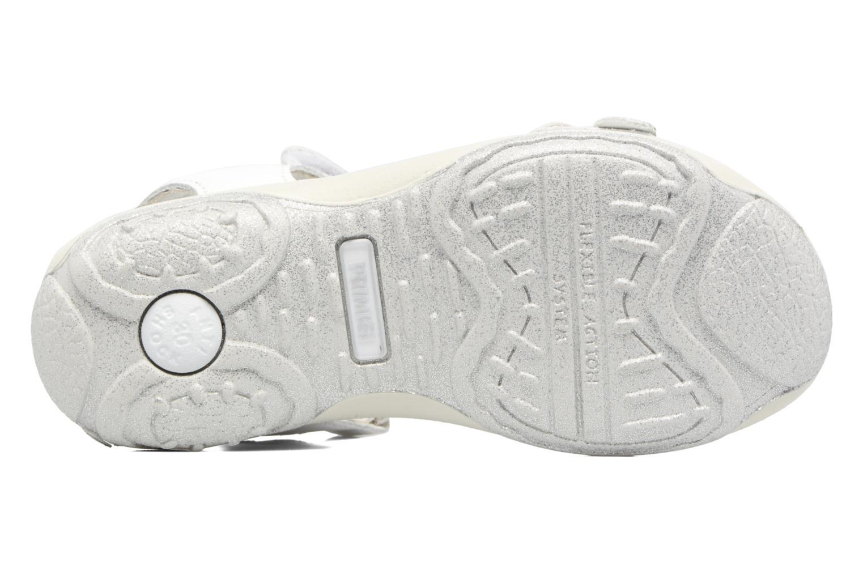 Sandali e scarpe aperte Primigi Anita Bianco immagine dall'alto