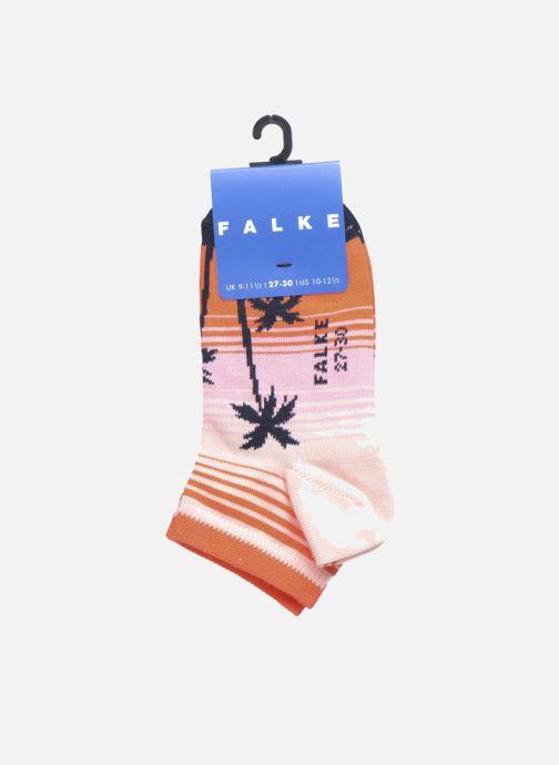 Socks & tights Falke Mini-Soquettes PALM BEACH SNEAKER Coconut Multicolor back view