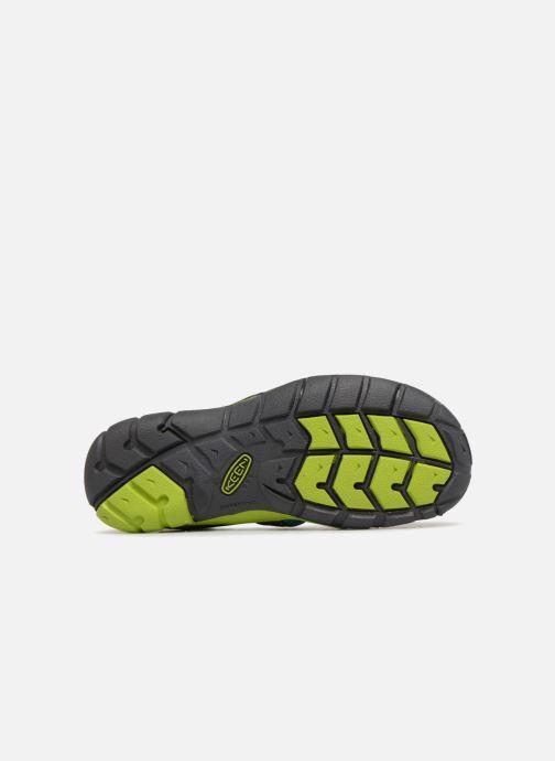 Sandales et nu-pieds Keen Seacamp ll CNX Noir vue haut