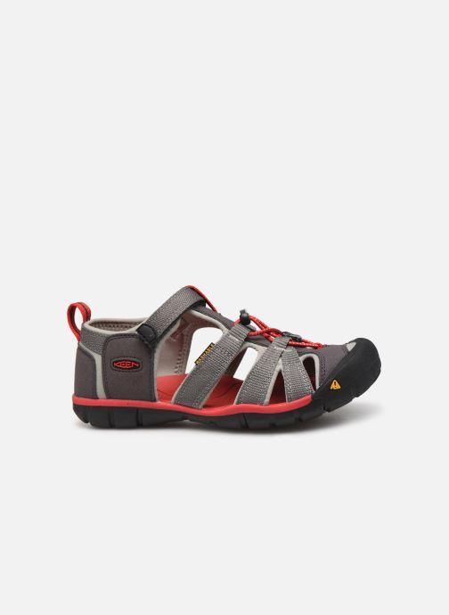 Sandales et nu-pieds Keen Seacamp ll CNX Gris vue derrière
