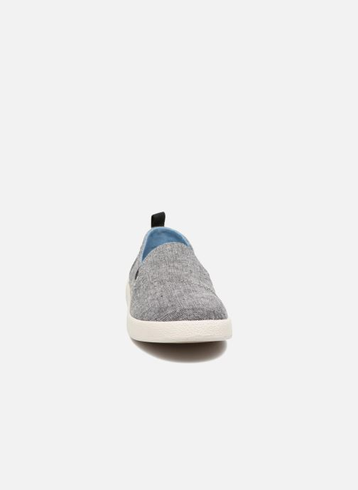 Trainers TOMS Avalon Grey model view