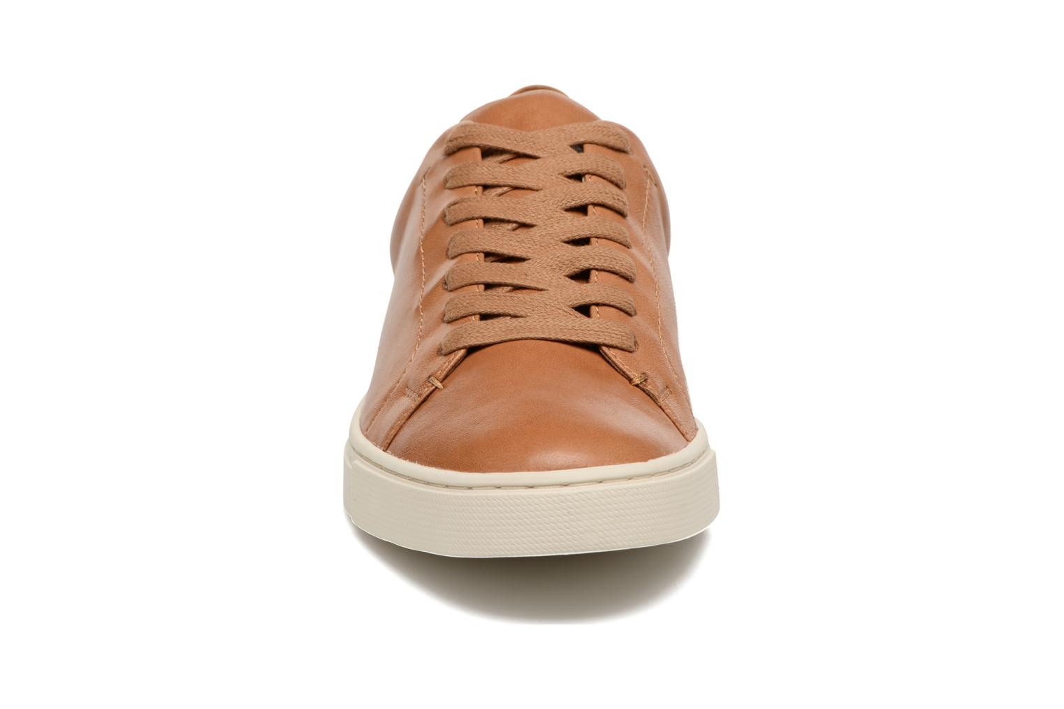 Sneakers Frye Ivy Low Lace Bruin model