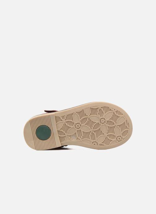 Chaussures à scratch Kickers Moly Rose vue haut