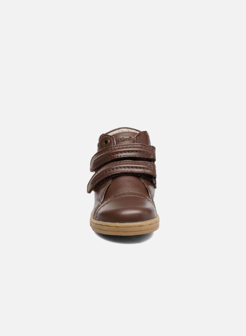 Sneakers Kickers Trackpad Bruin model