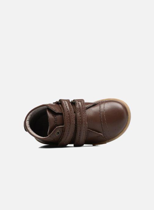 Sneakers Kickers Trackpad Bruin links