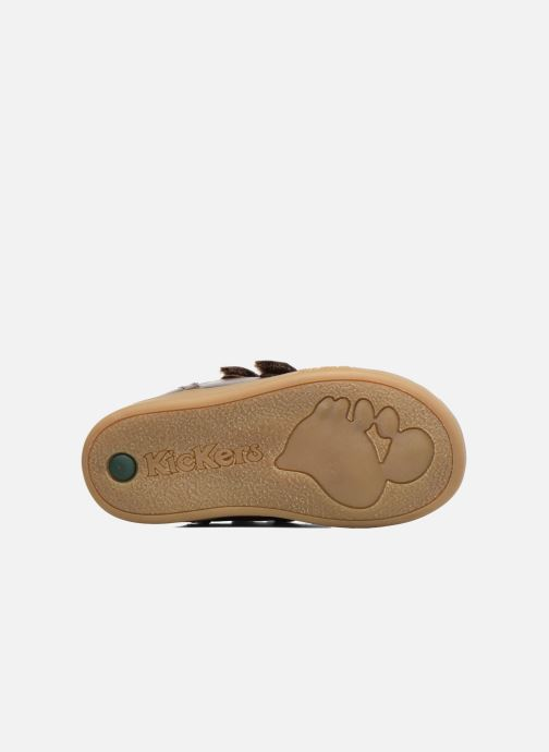 Sneakers Kickers Trackpad Bruin boven