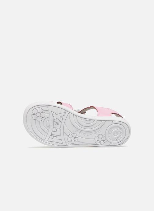 Sandales et nu-pieds Pediped Sidra1 Rose vue haut