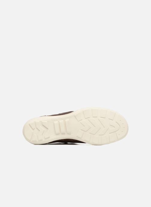Sneakers P-L-D-M By Palladium Gaetane Mbr Bruin boven