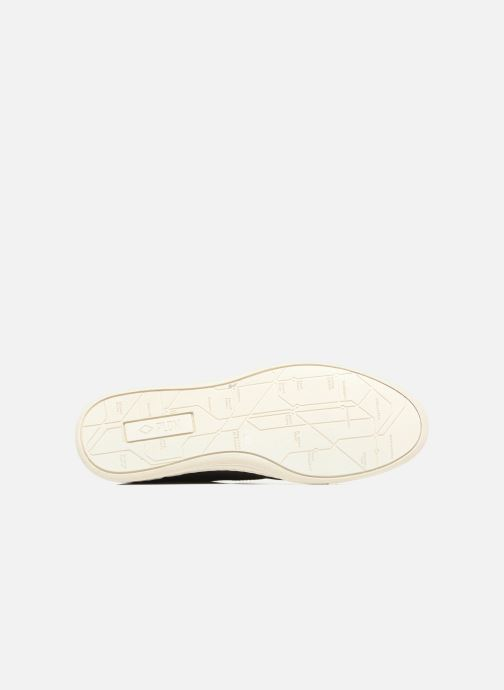 Sneakers P-L-D-M By Palladium James Sud Blauw boven