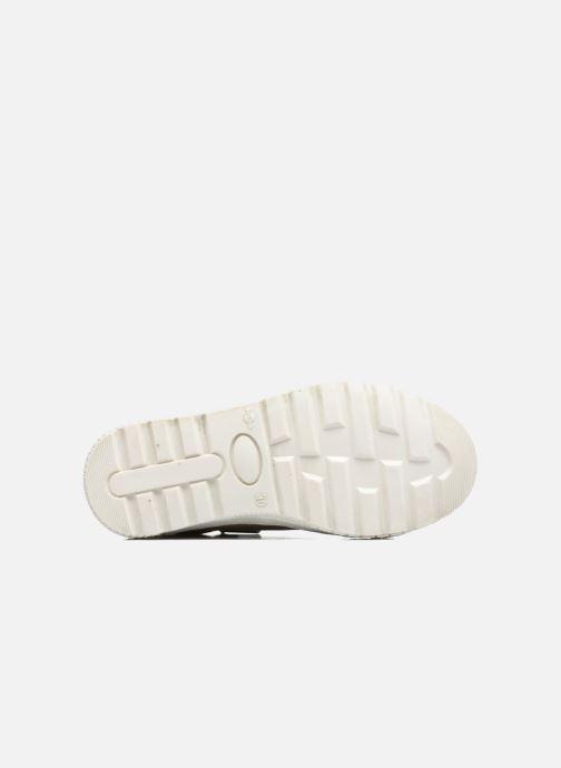 Sneakers P-L-D-M By Palladium Tudy Cvs Beige boven