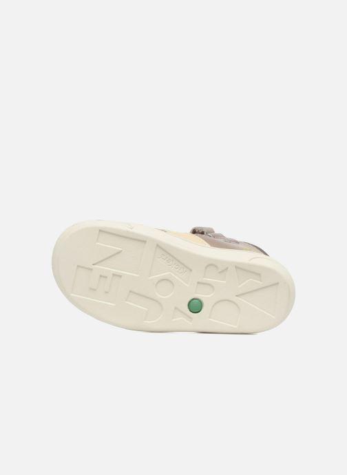 Sandalen Kickers Zohan Grijs boven