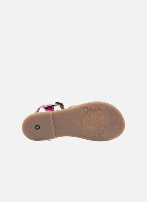 Sandalen Kickers Diwen Roze boven